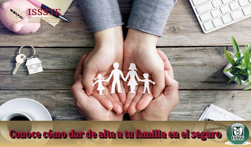 Conoce como dar de alta a tu familia en el seguro