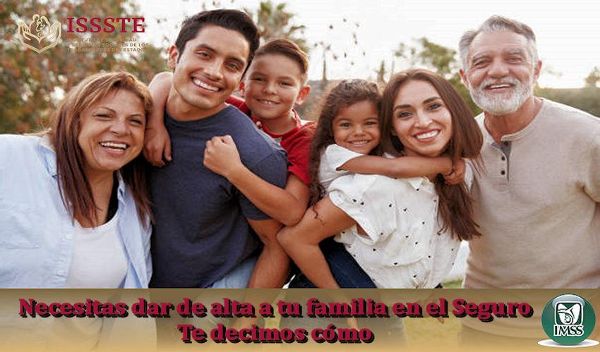 Dar de alta a tu familia en el seguro